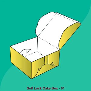 Self Locking Cake Boxes